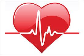 14. heart