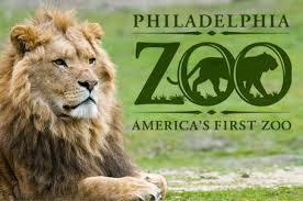 4. Zoo